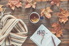 Autumn fashion seasonal concept Scandinavian knitted scarf cup hot black tea. Coffee Fall fallen maple leaves on wooden table with notebook pen Flat lay Top royalty free stock photo
