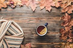 Autumn fashion seasonal concept Scandinavian knitted scarf cup hot black tea. Coffee Fall fallen maple leaves on wooden table with notebook pen Flat lay Top stock image