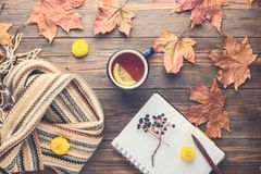 Autumn fashion seasonal concept Scandinavian knitted scarf cup hot black tea. Coffee Fall fallen maple leaves on wooden table with notebook pen Flat lay Top royalty free stock photography