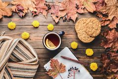 Autumn fashion seasonal concept Scandinavian knitted scarf cup hot black tea. Coffee homemade oatmeal cookies Fall fallen maple leaves on wooden table with stock photo