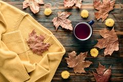 Autumn fashion seasonal concept sweater cardigan cup hot black tea. Autumn fashion seasonal concept, yellow warm soft comfortable sweater cardigan cup hot black royalty free stock photography