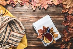 Autumn fashion seasonal concept sweater cardigan Scandinavian knitted scarf cup hot black tea. Autumn fashion seasonal concept yellow warm soft sweater stock images