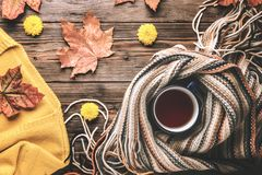 Autumn fashion seasonal concept sweater cardigan Scandinavian knitted scarf cup hot black tea. Autumn fashion seasonal concept, yellow warm soft comfortable royalty free stock photography