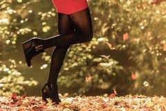 Autumn Fashion Vrouwelijke benen in zwarte nylonkousen openlucht royalty-vrije stock afbeeldingen