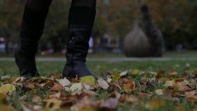 Autumn Fashion Weibliche Beine in der schwarzen Strumpfhose und in den stilvollen modernen Schuhstiefeln, goldene Blätter im Frei stock video footage