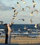 Autumn, tourists feed seagulls on the beach Stock Image