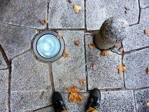 Autumn feelings on cobblestone Royalty Free Stock Image