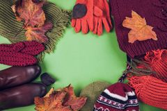 Autumn female outfit. Set of clothes, shoes and accessories. On green background Stock Images