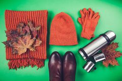 Autumn female outfit. Set of clothes, shoes and accessories. On green background Royalty Free Stock Photos