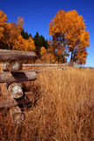 Autumn Fence 4. Autumn In Valley County Idaho Stock Photos