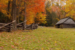 Autumn fence and barn alpha Stock Image