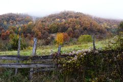 Autumn. Fence of the estate and color of autumn Royalty Free Stock Photos