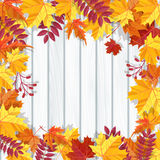Autumn festival background. Invitation banner with fall leaves. Vector illustration. Autumn festival background. Invitation banner with fall leaves and lettering Stock Image