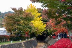 Autumn Festival på Kawaguchiko område i Japan arkivfoto