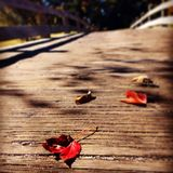 Autumn. A few scattered leaves on a small wooden bridge convey a feeling of fall Royalty Free Stock Photography