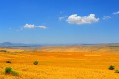 Autumn Field. Autumn Yellow Field After Harvest In Upper Galilee, Israel Stock Images