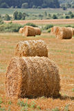 Autumn field. And straw piles Royalty Free Stock Image