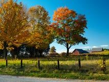 Autumn field Stock Photography