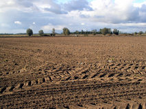Autumn field. Landscape with tractor stock images