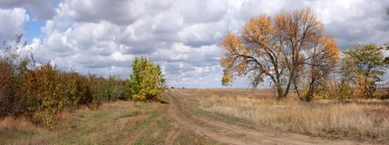 Autumn field banner Royalty Free Stock Photography
