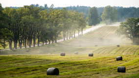 Autumn field. In bright day in countryside with rolls of hay Royalty Free Stock Image