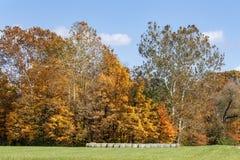 Autumn Field e Hay Rolls fotografia stock libera da diritti