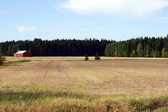 Autumn Field in Finland. A field with a red barn and forest on the background, and two spruce trees as the focal point. Photographed in Tilkanen, Finland Stock Image