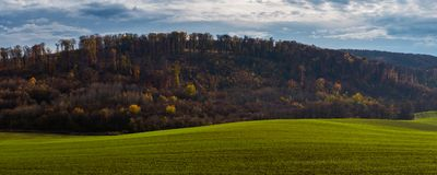 Autumn field and forest Stock Photos