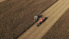 Autumn field and harvesting process top view. Harvester-combine. Yield increase, success season for economy, money land stock video footage