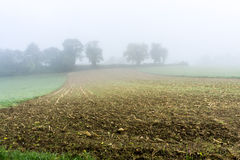 Autumn field in morning mist - France Royalty Free Stock Image