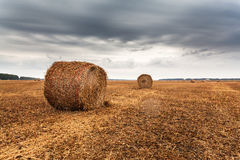 Autumn field with sheaves of hay and dramatic sky. Royalty Free Stock Photo