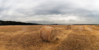 Autumn field with sheaves of hay and dramatic sky. Stock Image