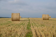 Autumn field with straw bales Stock Photography