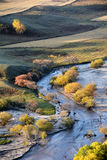 Autumn field with stream and golden birch trees Royalty Free Stock Photo