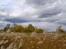 Autumn field under the cloudy sky Stock Image