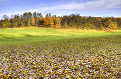 Autumn fields. Royalty Free Stock Image