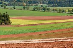Autumn Fields Stock Photography