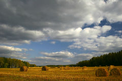 Autumn fields of Russia Stock Photo