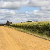 Church on the edge of the cornfield. Autumn fields in Spain before harvesting. Service dirt road for agricultural production. Old Spanish church on the edge of stock images