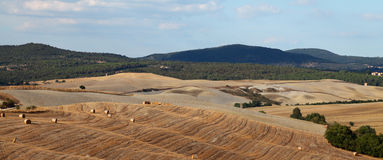 Autumn fields of Tuscany stock photo