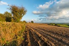 Autumn Fields Stock Photo