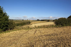 Autumn fieldscape Royalty Free Stock Images