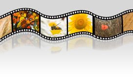 Autumn film strip. Film strip with autumn pictures Royalty Free Stock Image