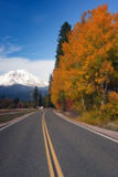 Autumn Finds Foliage Rural Road McCloud California Mount Shasta stock photos