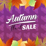 Autumn flash sale vivid color seasonal leaves. Additional file in eps 10 royalty free illustration