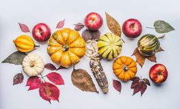 Autumn flat lay composing with pumpkin, apples and fall leaves Royalty Free Stock Images