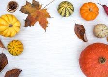 Autumn Flat Lay estacional con calabaza y hojas caidas foto de archivo