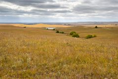 Autumn Flint Hills fotografia de stock