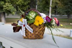 Autumn floral arrangement. In a basket royalty free stock photos