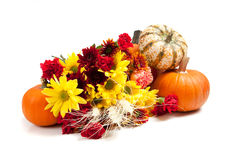Autumn floral arrangement on white Stock Image